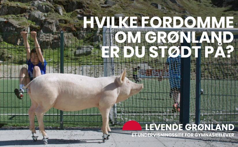 Levende Grønland – et nyt undervisningsmateriale om Grønland